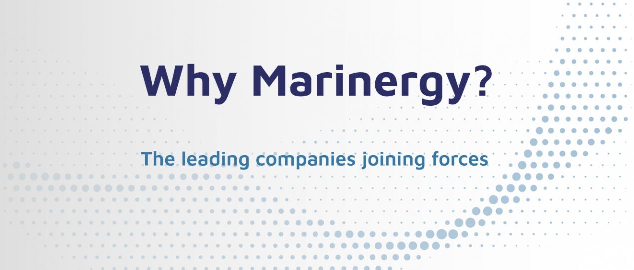 Why Marinergy?